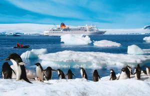 antarctica-cruise